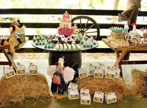 Fiesta de Cumpleaños en la granja