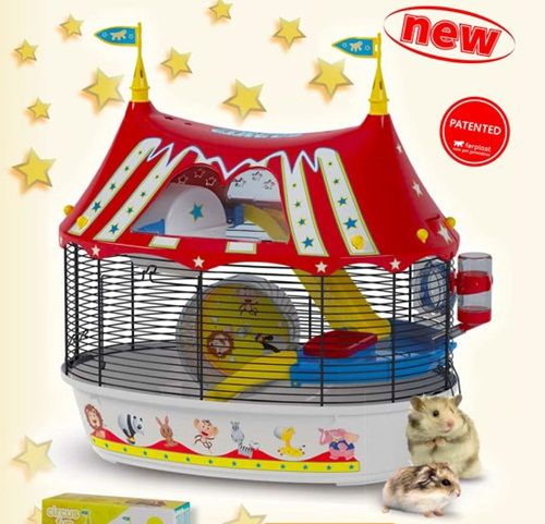 Circo vintage para pequeñas mascotas: ¡qué diver!