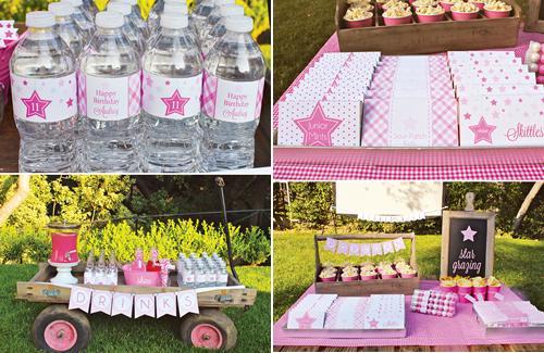 fiesta-tematica-rosa3