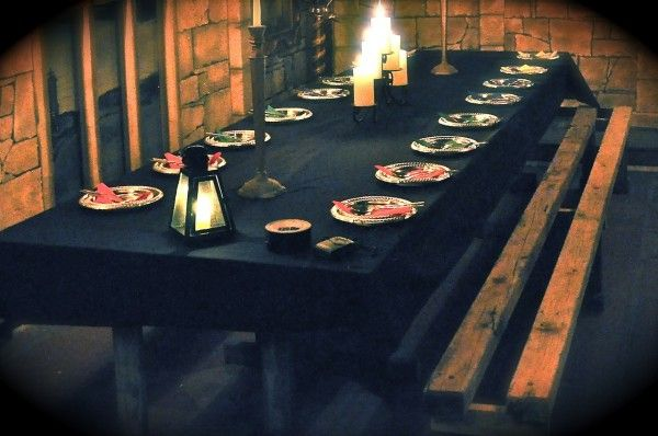 fiesta harry potter (1)
