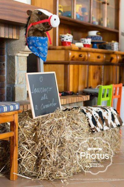 fiesta cumpleaños en el campo rustica granja 12