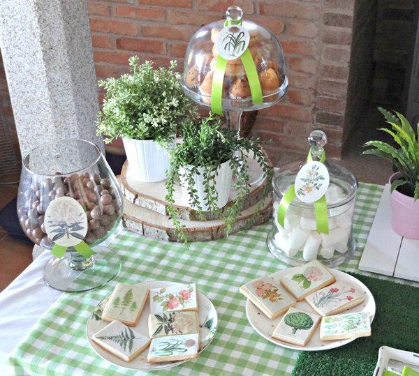 Ideas fiesta de plantas para niños