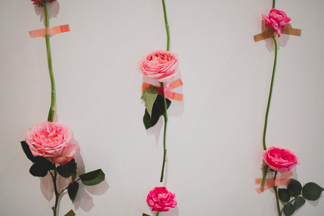 photocall-rosas