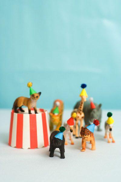 Gorritos para una fiesta de animales