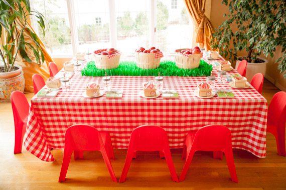cumpleaños fiesta granja
