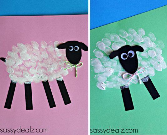 la lana de la oveja