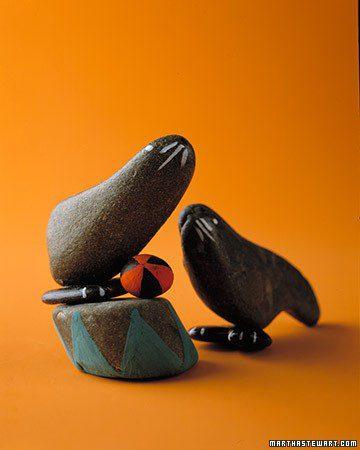 foca piedra