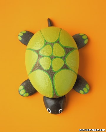 tortuga piedra