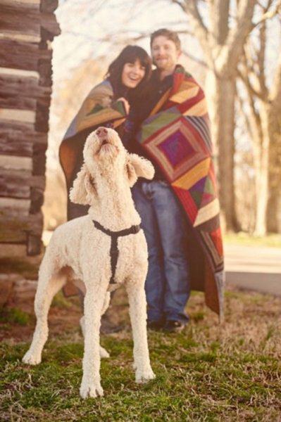 fotos-de-las-mascotas-para-felicitar-las-navidades-2-399x600