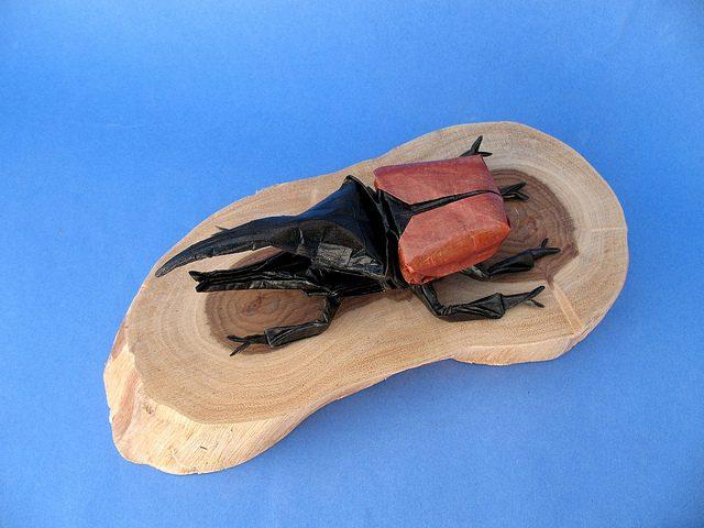 animales con papel origami niños escarabajo