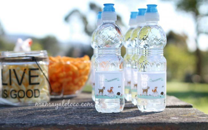 ideas para cumpleaños de niños pequeños con animales etiquetas botellas