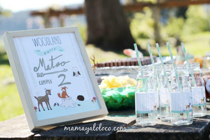ideas para cumpleaños de niños pequeños con animales organización