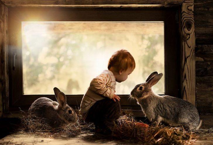 foto con conejos niño bebé