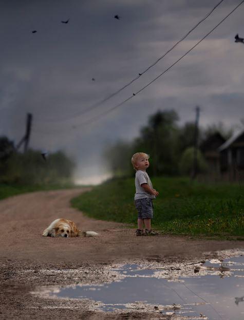 foto perro con niño artística