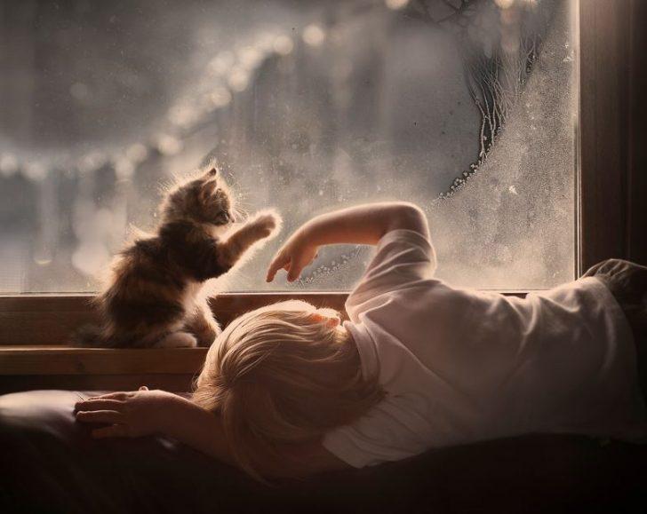 fotos de niños con gatitos