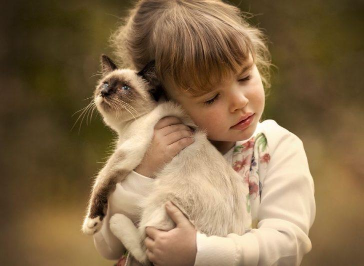 fotos de niños con gatos