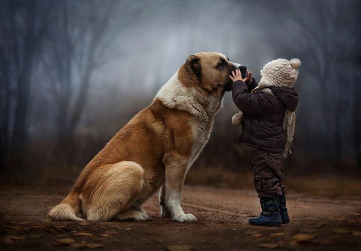fotos de niños con perros