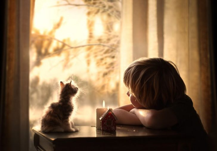 ideas para hacer fotos bonitas con animales y niños