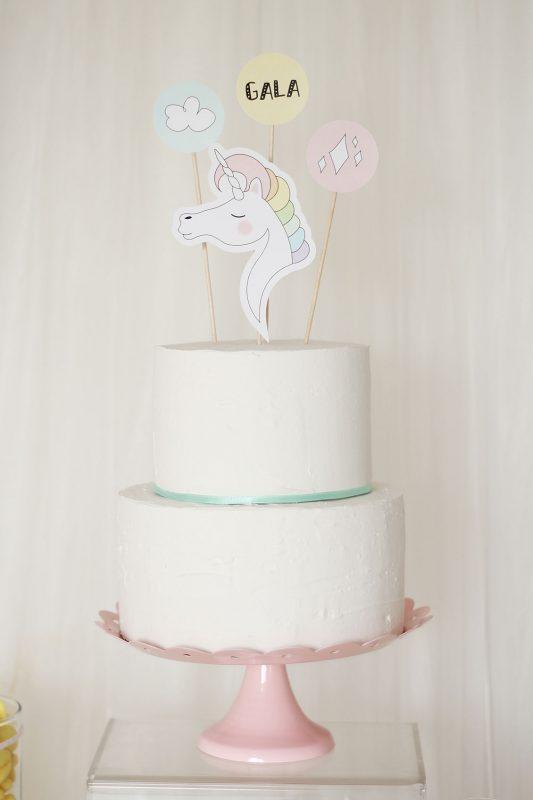 nice-party-fiesta-unicornio