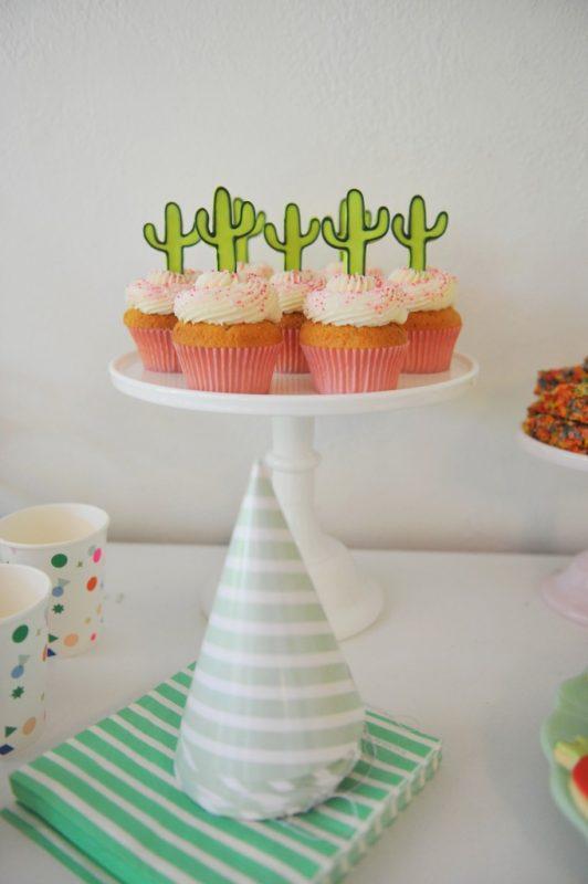 otra-fiesta-de-cactus-para-ninos