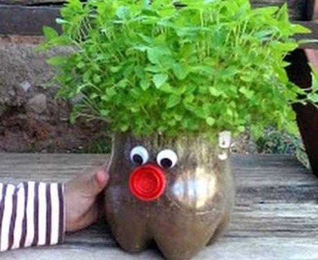 DIY de plantas para niños: reciclar botellas de plástico