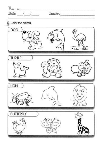 animales-inglés