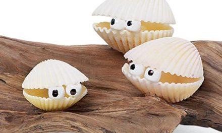 Manualidades con conchas de mar para niños