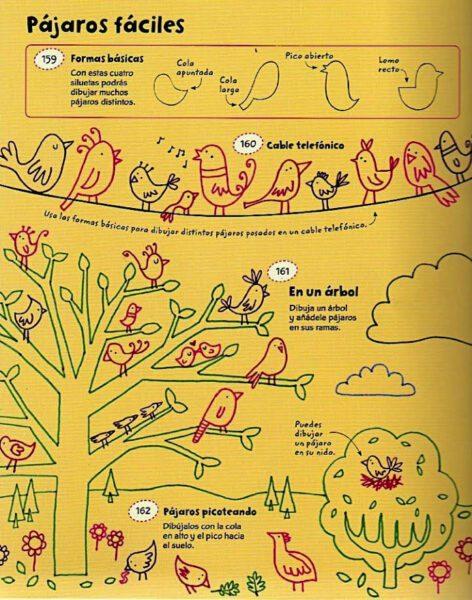 dibujar pájaros